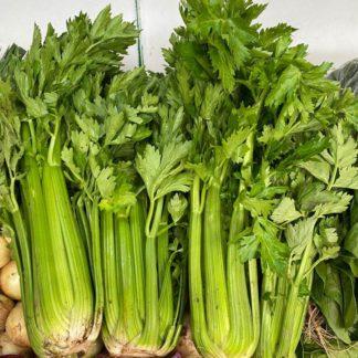 celery-unit-paloquemao