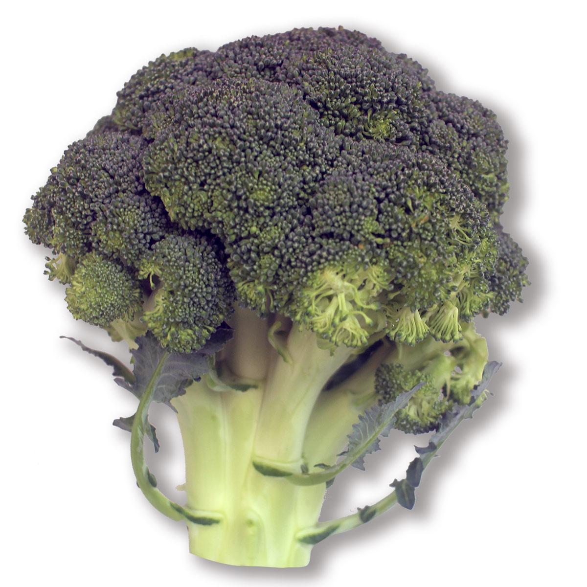 Brócoli por libra, fresco y de la mejor calidad, tenemos domicilios en Bogotá.