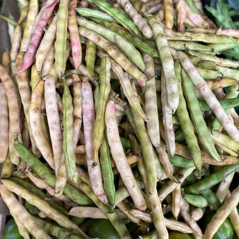Frijol-verde-en-cascara-1Lb-paloquemao
