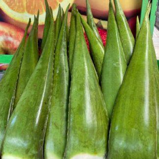 Hoja de sabila - Domicilio - Plaza de Mercado de paloquemeo