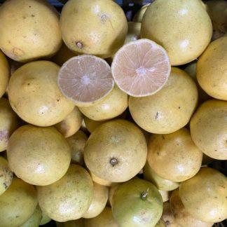 Lima-limon-Lb-paloquemao