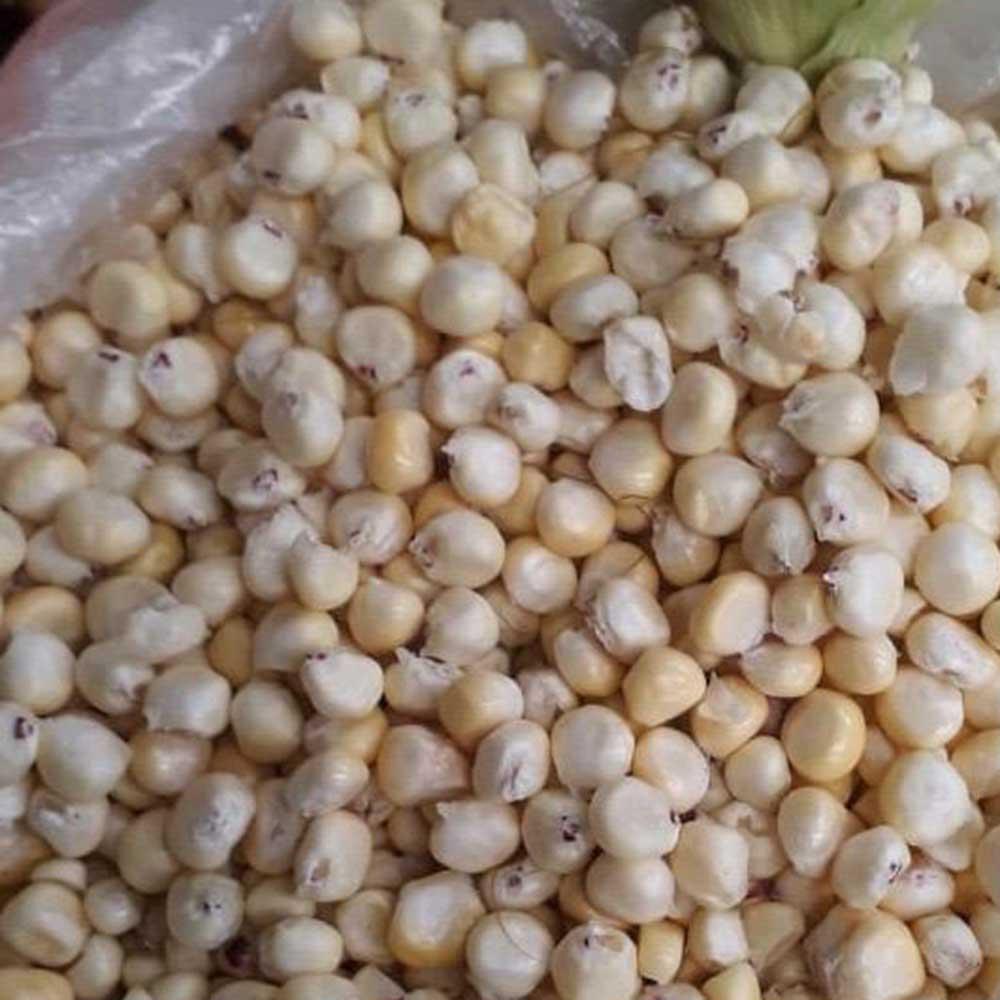 Mazorca sabanera desgranada - 1 Lb