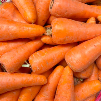 Zanahoria-pareja-paloquemao