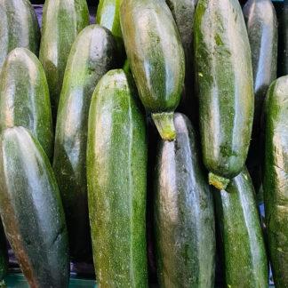 Zucchini-verde