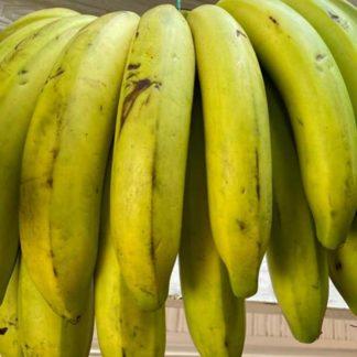 banano-criollo2-kilo-paloquemao