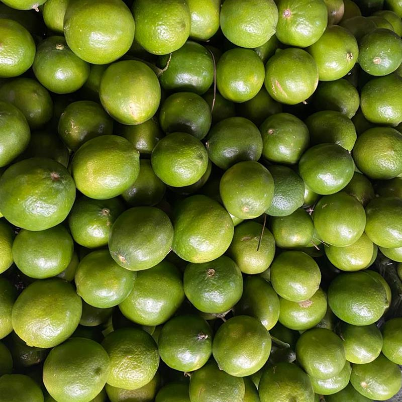limon-tahití-lb-paloquemao