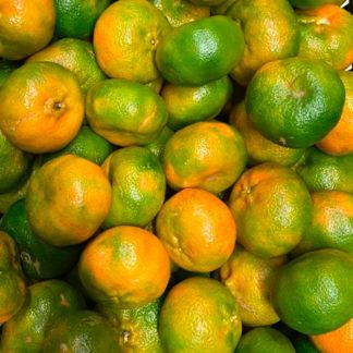 mandarina-pareja-paloquemao