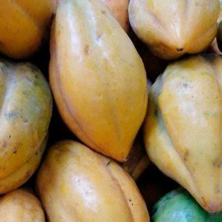 papayuela-lb-paloquemao