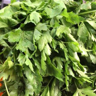 parsley-bunches-paloquemao