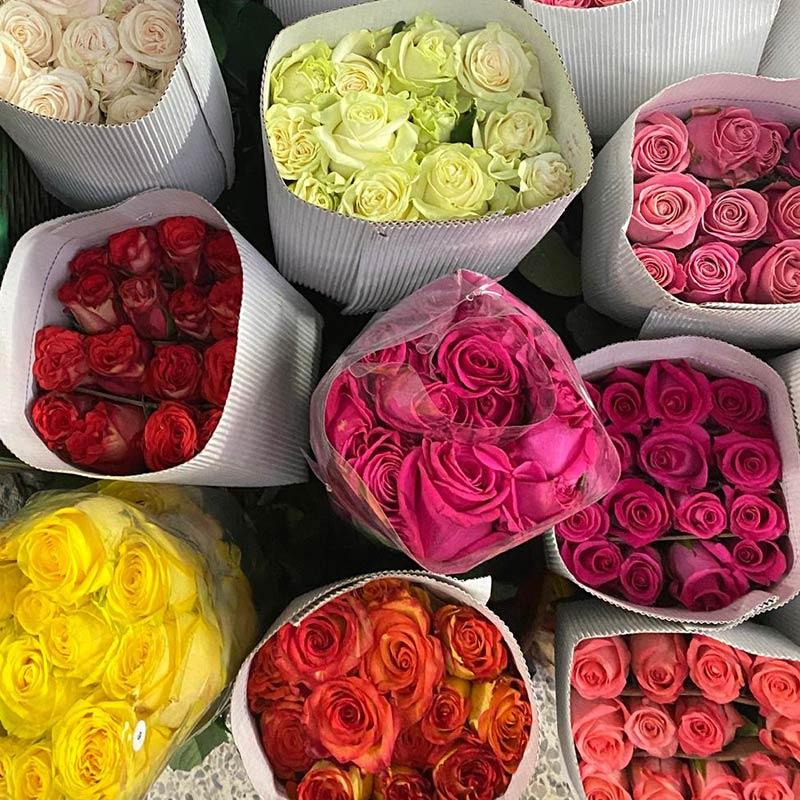 rosas-paquete-grande-paloquemao