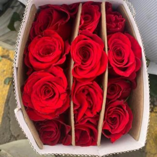 red-roses-packet-paloquemao