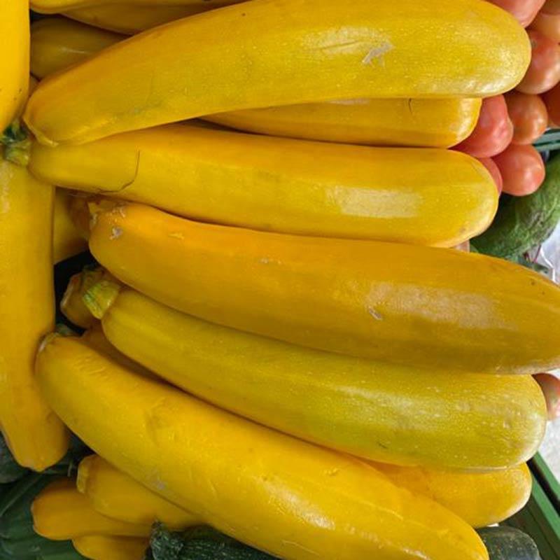 sukini-amarillo-lb-paloquemao