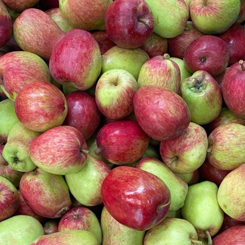 Manzana-de-agua