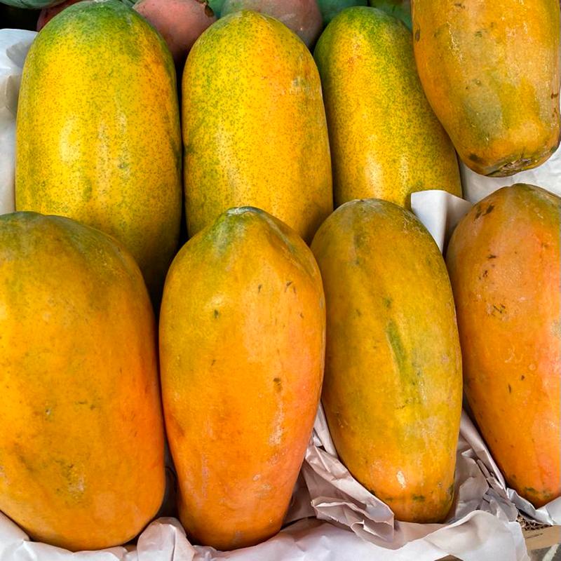 Papaya-paloquemao