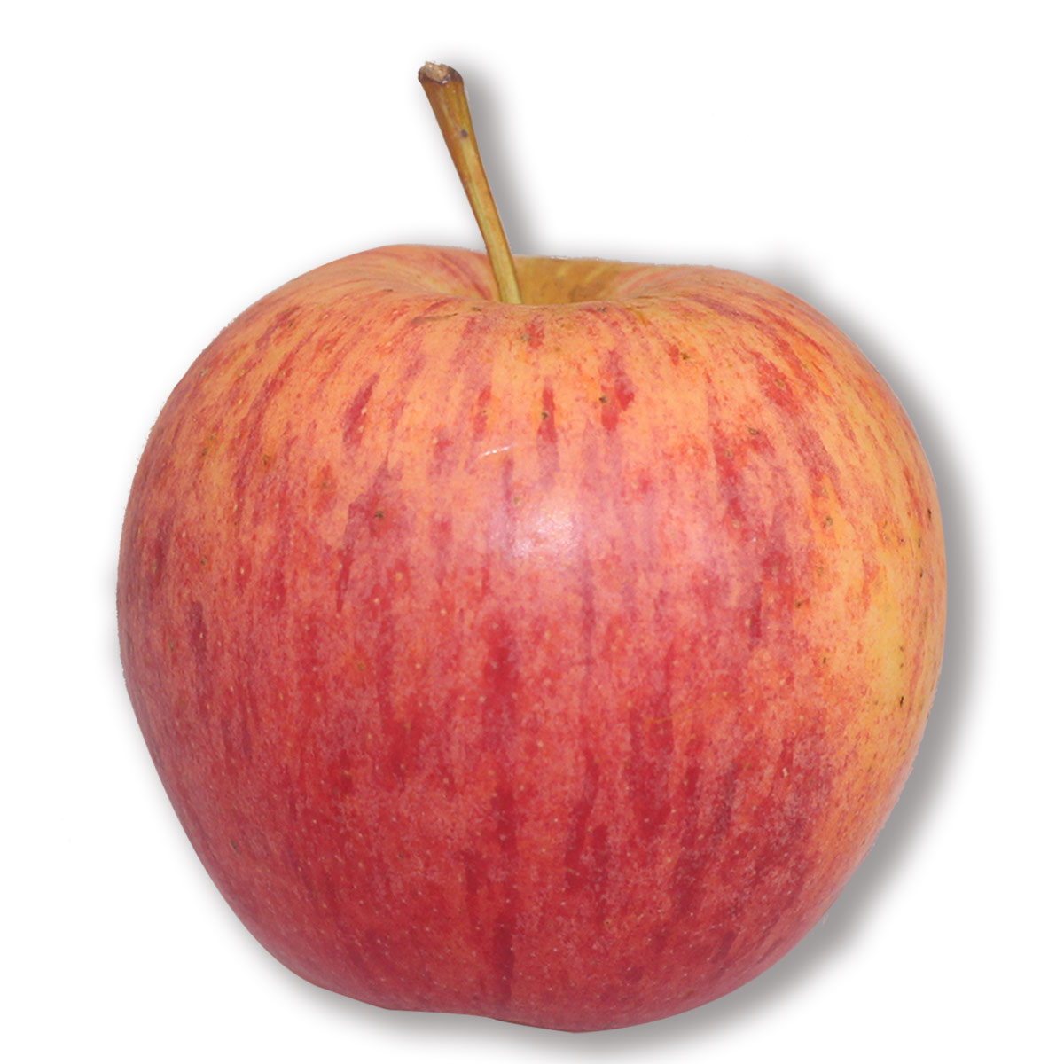 Royal Apples per unit, fresh and of the best quality, deliveries in Bogota.