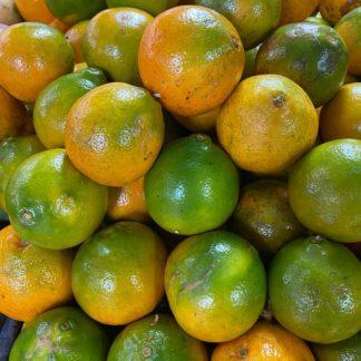 Naranja-tangelo
