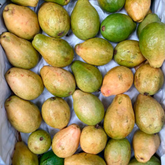 Guayaba-pera